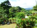 A view of the garden and tall volcanic mountains in the distance